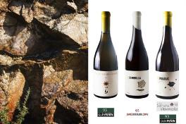 La crítica internacional insiste en la mejoría de los vinos de Bodegas El Paraguas