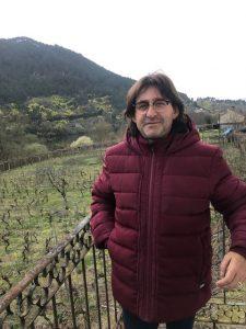 Nueva viña de calidad en Ribadavia